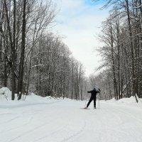 На лыжах до апреля будем мы ходить!  :-) :: Андрей Заломленков