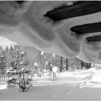 Зима волнистая. :: Вера Литвинова
