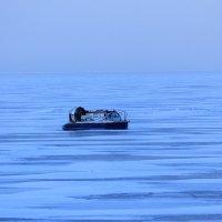 По ледяным просторам. :: Андрей