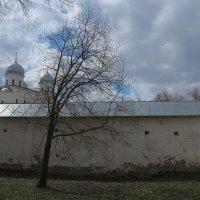 Юрьевский монастырь. В. Новгород :: Наталья