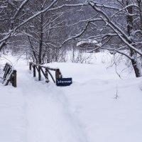 Река зимой :: Георгий Морозов