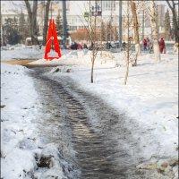 Прищепка :: Александр Тарноградский