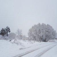 Настоящая зима :: Вадим