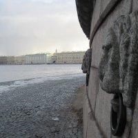 Февраль на стрелке Васильевского острова :: Маера Урусова