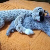 Отдохнём!!! :: Виктория Гавриленко