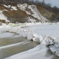 прогулка по льду :: Елена Шаламова