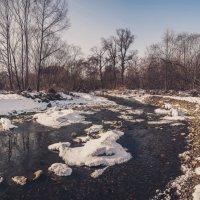 Лесной ручей :: Эдуард Куклин