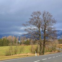 По дороге в горы :: tamara *****