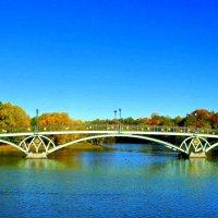 Царицыно, нижний пруд, фигурный мост :: Люсьена Шах