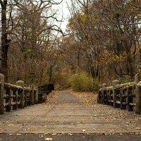 старый мост :: Petr @+
