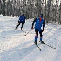 Лыжный месяц февраль! :: Андрей Заломленков