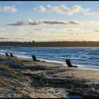 Kakumäe rand. 24.02.2020. :: Jossif Braschinsky