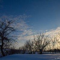 Зимний закат :: Юрий Фёдоров