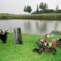 В охоте на бобра, 1 :: Kostas Slivskis