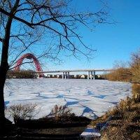 Февральский лёд на Москве-реке :: Ирина - IrVik