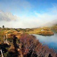 туман, осенний туман :: Elena Wymann