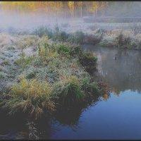 Сегодня последний день зимы  Яуза :: олег свирский