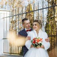 Свадебная фотосессия Кричев - Краснополье :: Евгений Третьяков