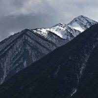 В горах Карачаево - Черкесии - 9 :: Анатолий Стрельченко