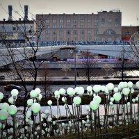 Мост, как птица, парит расставив два крыла. :: Татьяна Помогалова