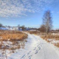 Уходящая зима :: Константин