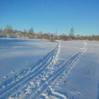 Лыжня :: Елена Байдакова