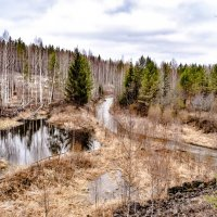 весна  в Зауралье. :: petyxov петухов