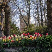В парке замка Гран-Бигар :: Nina Karyuk