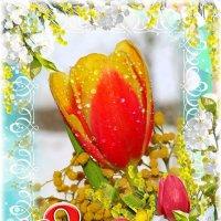С праздником весны и любви, милые дамы! :: Андрей Заломленков