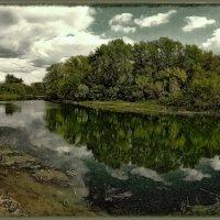 Картина ранней осени :: Наталья Ильина