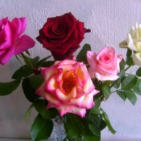 Цветы для дам :: Самохвалова Зинаида