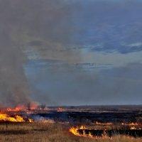 Степной пожар :: Восковых Анна Васильевна