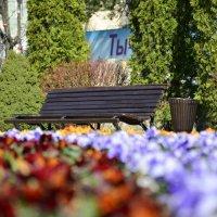 скамейка :: Геннадий Титов
