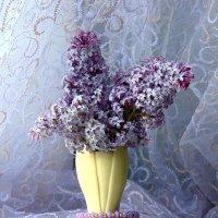 Сиреневый натюрморт. :: nadyasilyuk Вознюк