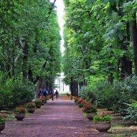 Аллеями Нескучного сада :: Liliya Kharlamova