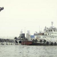 Земснаряд :: Антуан Мирошниченко