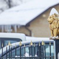 Снежная коронация :: Антуан Мирошниченко