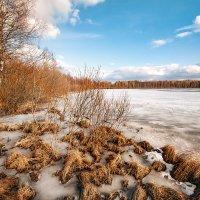 Чогозеро :: Юлия Новикова