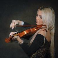 Скрипка :: Андрей Бондаренко
