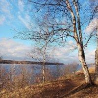 Невские берега :: Фотогруппа Весна-Вера,Саша,Натан