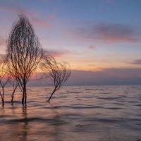 .... осенью были на берегу... :: Leonid Shafran