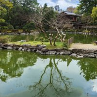 В императорском маду Киото :: Shapiro Svetlana