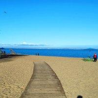 Дорожка на пляже :: Станислав Гераськин
