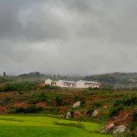 Хмурым утром... Мадагаскар! :: Александр Вивчарик
