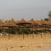 пляж в Тунисе :: НАТАЛЬЯ