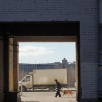 прогулка с собакой солнечным днём :: sv.kaschuk