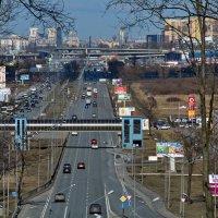 Вид на город с Пулковских высот :: Валентина Папилова