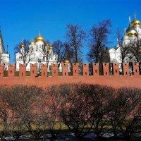 Смартфон   заглянул за  __ кремлевскую   стену ... :: Игорь Пляскин
