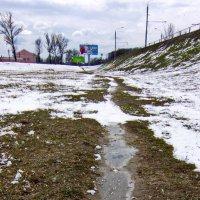 Дыхание весны... Тропинка домой... :: Владимир Зырянов