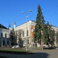 Большая и Малая гильдии составляют комплекс из двух рядом стоящих зданий :: Елена Павлова (Смолова)